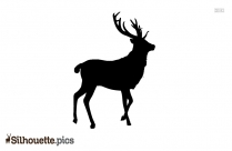 Black Deer Photography Silhouette