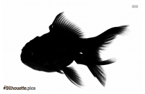 Black And White Wahoo Fish Silhouette