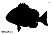 Red Fish Vector Silhouette Art