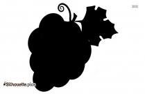 Black Grapes Silhouette Vector Image