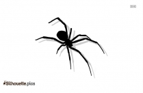 Arachnid Camel Spider Silhouette