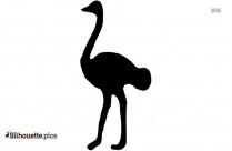Free Pet Bird Silhouette