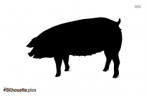 Pig Drawing Picture For Personal Use Silhouette