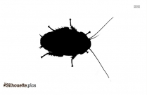 Clipart Cockroach Silhouette