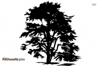 Black And White Heart Tree Drawing Silhouette