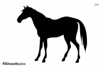 Black Standing Horse Silhouette Image