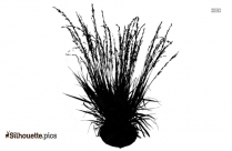 Black Tall Grass Plants Silhouette Image