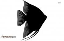 Clown Fish Drawings Silhouette