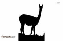Cute Alpaca Silhouette Drawing