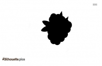 Pineapple Clipart Silhouette Picture