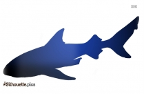Great Shark Silhouette