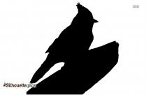 Cardinal Bird Silhouette Free