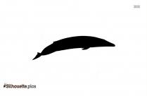Humpback Whale Silhouette Clip Art