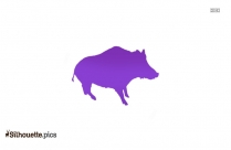 Pig Drawing Silhouette Picture