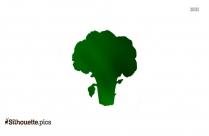 Broccoli Silhouette Free Vector