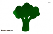 Brussels Sprout Silhouette Vector Image