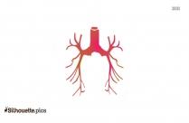 Bronchial Tubes Silhouette