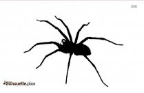 Spider Arthropod Insect Silhouette