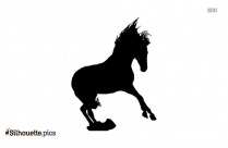 Horse Walking Picture Silhouette