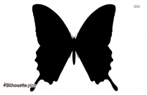 Butterfly Drawings Silhouette Image