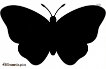 Butterfly Silhouette Background Image