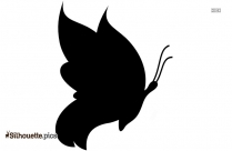 Free Butterfly Drawing Silhouette