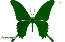 Butterfly Art Silhouette