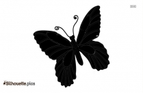 Simple Butterfly Drawing Silhouette Image