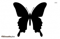 Black Cute Butterfly Silhouette Image