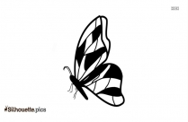 Butterfly Side View Free Vector Silhouette
