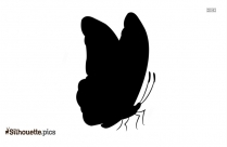 Butterfly Drawing Side View Silhouette Art