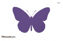 Butterfly Logo Silhouette For Download