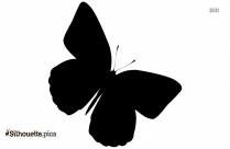 Flying Butterfly Silhouette Vector Illustration