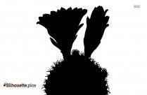 Cactus Flower Silhouette