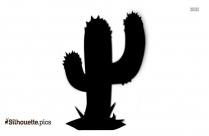 Cactus Silhouette Cartoon