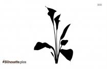 Spring Crocus Flower Logo Silhouette For Download