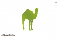 Camel Drawing Silhouette