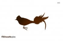 Cardinal Bird Silhouette Drawing
