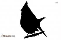 Blue Jay Bird Silhouette Image