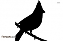 Black Mallard Silhouette Image