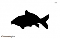 Carp Fish Silhouette For Download
