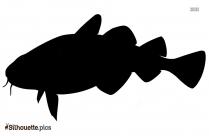 Carp Fish Silhouette Illustration