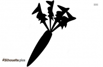 Wild Carrot Silhouette Drawing