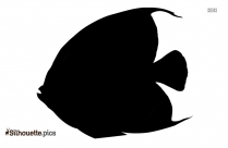 Sea Animals Vector Silhouette