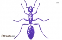 Cartoon Ant Drawing Silhouette