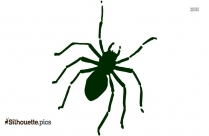 Free Brown Recluse Spider Silhouette
