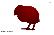 Baby Chick Silhouette Picture