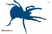 Black House Spider Silhouette Image