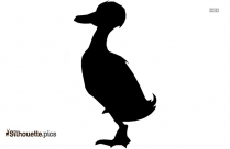 Free Cartoon Quail Silhouette