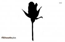 Single Tulip Silhouette Picture